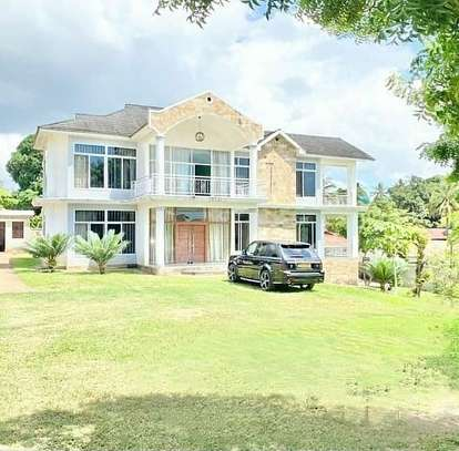 4 bed room  big house for rent at goba image 5