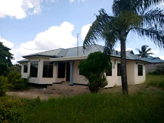 A House with big yard For Rent