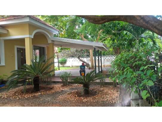 3bed compound house at oyster bay with big garden  on tarmac image 2