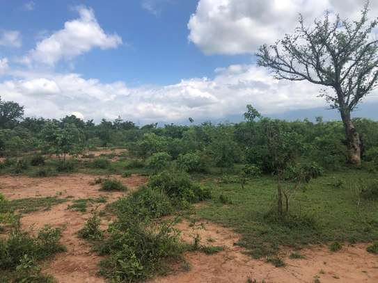 6.5 acre at lugano kinyenze tsh 700,000 image 15