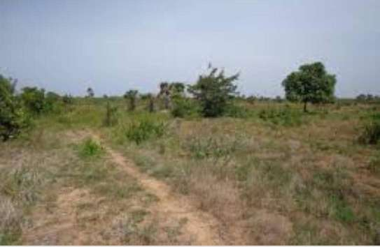 KIGAMBONI AWESOME PLOT AT VERY LOW PRICE, BUY TO BUILD YOUR DREAM HOME image 3