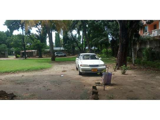 small house with big compound at mikocheni i deal for office,yard $2000pm image 8