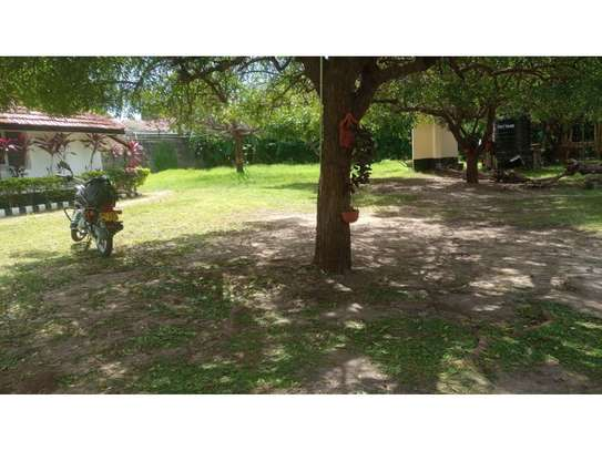 2 bed room house for rent at oyster bay zambia road near kenya embassy image 9