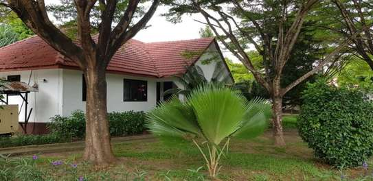3bed house at ada estate  stand alone  f image 7