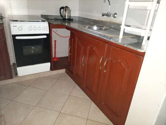 2 Bedroom apart fully furnished near America embassy image 5