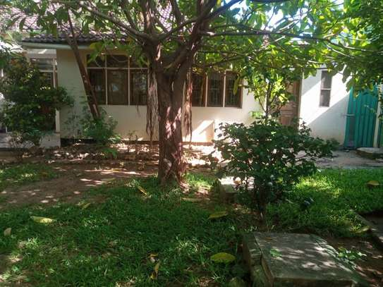3bed room house at masaki $800 image 9