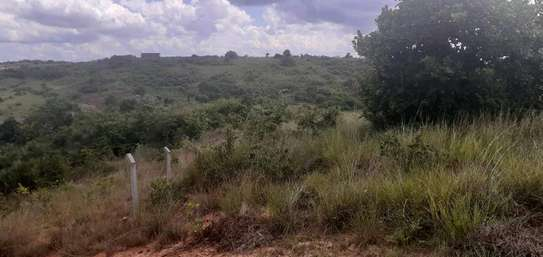 Land for sale image 2
