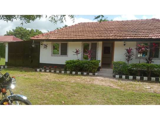 2 bed room house for rent at oyster bay zambia road near kenya embassy image 10