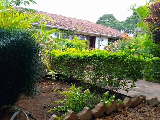 3 bed room amaizing house stand alone for rent at oyster bay image 4