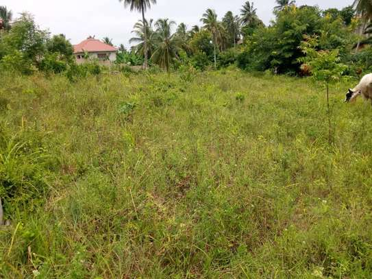 Plot for sale Mbezi kwa Joseph, km 2 from the main road image 3