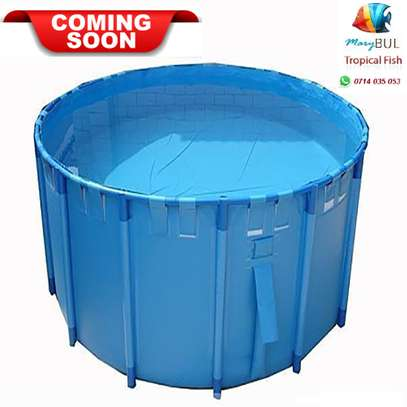 1,100 Liters flexible & folding PVC Fish pond / Bwawa la kufugia Samaki lita 1,100
