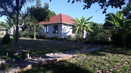 4 bed room house for sale at mapinga bagamoyo , house with big terrace and swimming pool image 8