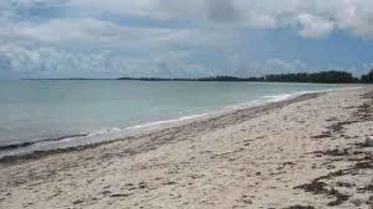 Buy Our Prime Beach Property image 1