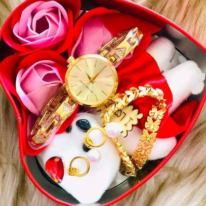 Gift package watch