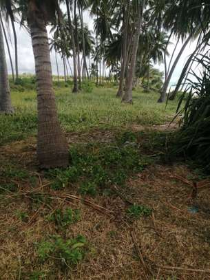 40,400 sqm SEAFRONT LAND FOR SALE-ZANZIBAR ISLAND image 3