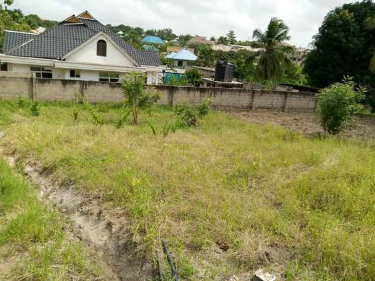 Plot for sale Mivumoni Madale-1.5 km from main road image 3