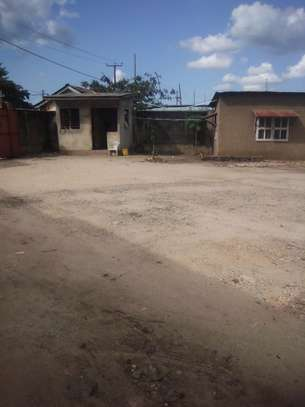 YARD FOR RENT image 12