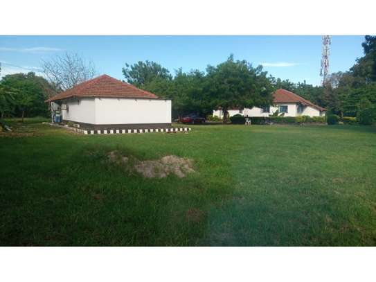 2bed house at oyster in the compound  near KCB BANK tsh 800,000 image 13