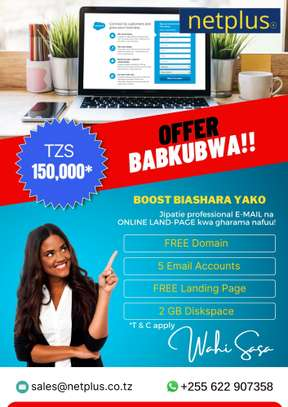 Website Landing Page & Business Email Service - Netplus Tanzania image 1