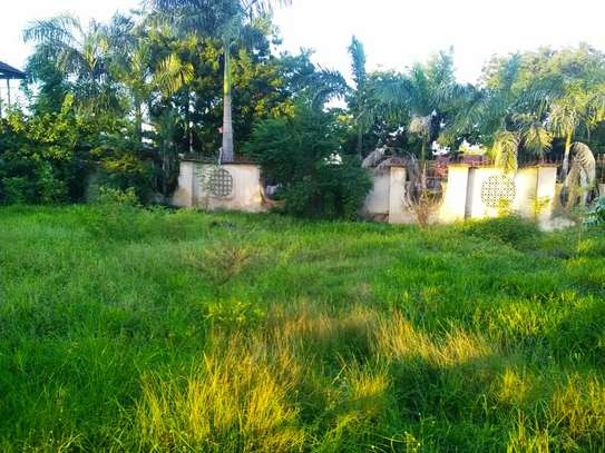 1200 Sqm in Jangwani Beach Kilongawima image 3