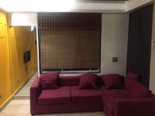 1 bedroom rental flat for expats in Upanga. image 10