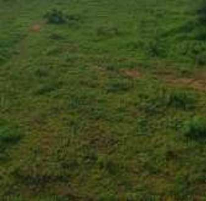 615Sqm Land at Tandale