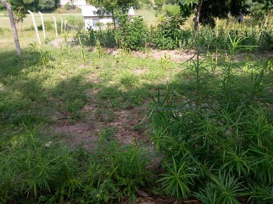 plot for sale at goba contena image 10