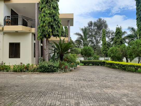 4 Bedrooms House For Rent in Oysterbay image 7