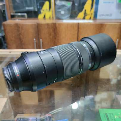 Olympus M.Zuiko Digital ED 100-400mm F5.0-6.3 IS Lens for Micro Four Thirds Cameras image 2