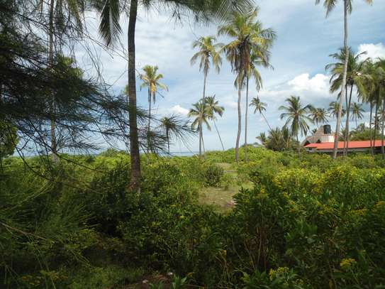 5,668 sqm OCEANFRONT LAND AT MATEMWE VILLAGE-ZANZIBAR ISLAND image 2