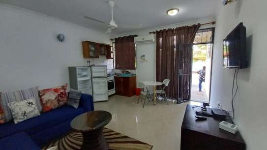 NICE 1BHK APARTMENT FULLY FURNISHED FOR RENT AT MIKOCHENI image 8