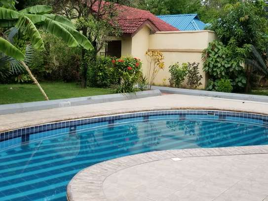 4bed house  at avacado  with nice gaeden and swimming poool image 6