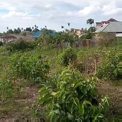 1067 SQM. Plot with Title Deed going Cheap at Kibada/Kigamboni image 1