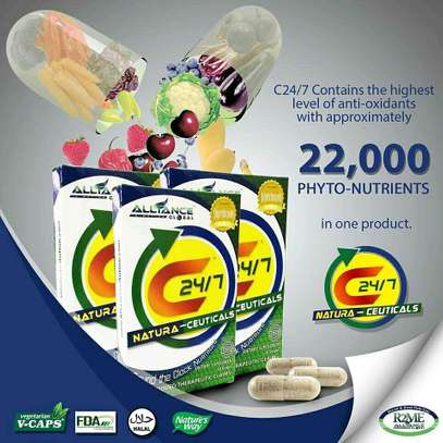 C24/7 FOOD SUPPLEMENTS