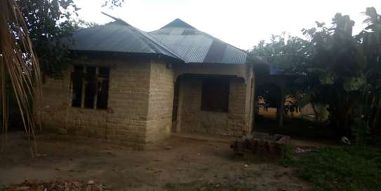 3 Bdrm House in Tanga image 4