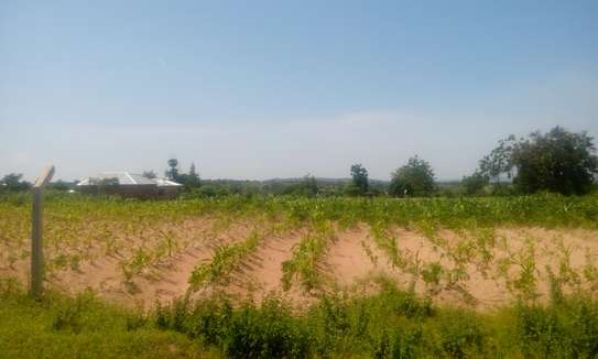 7500 Sqm Land in Usagara image 1