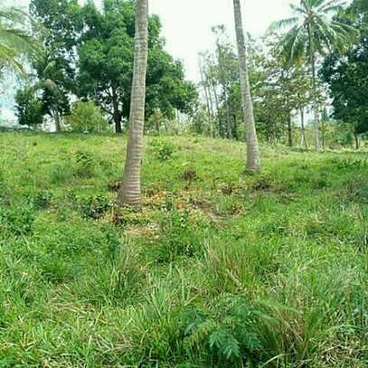 Land for Sale at Kibamba Near National Muhimili hospital image 2