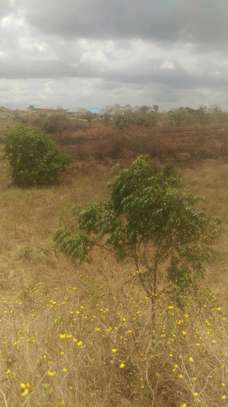 149 acres at Nguru forest Morogoro Town image 2