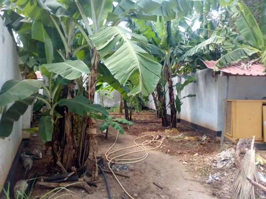 3bed house bungalow at ada estate  on tamarc image 2