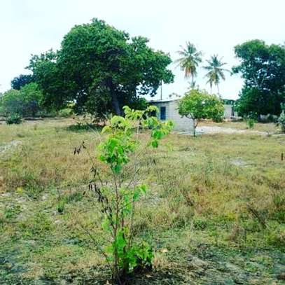 KIGAMBONI AWESOME PLOT AT VERY LOW PRICE, BUY TO BUILD YOUR DREAM HOME image 1