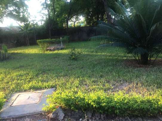 4 bed room house for rent at oyster bay $1500pm image 4