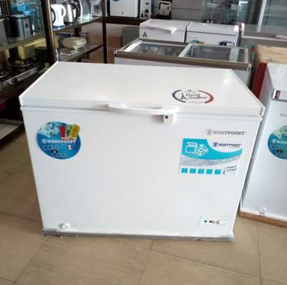 West Point freezer 300LT image 1