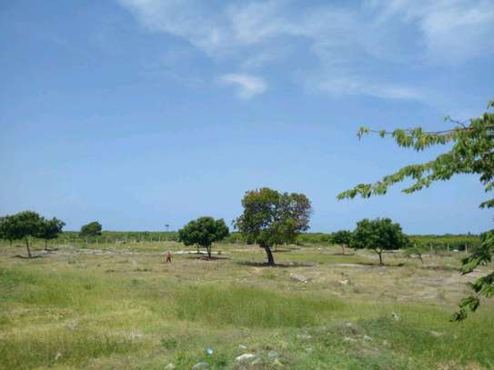 9 Acres plot with mangrove forest beach for sale.Tsh 1.2b image 2
