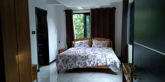 2 Bdrm Full furnished Apartment in Masaki image 4