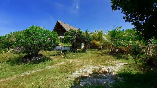 3 Bdrm Property  in Jambiani