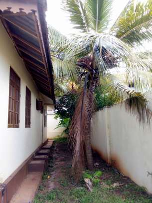 3 bed Self contained villa for rent image 9