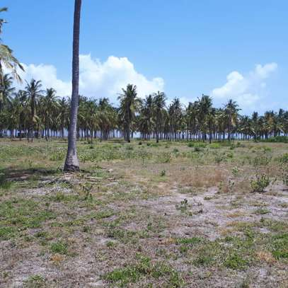 beach plot for sale at kigamboni 11 acres image 8