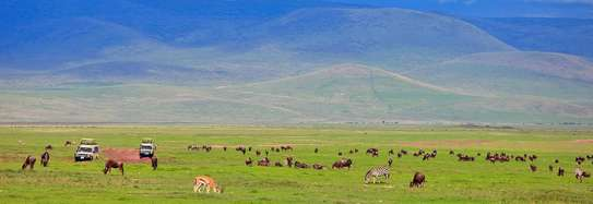 2-days Tanzania safari: Tarangire and Ngorongoro Crater