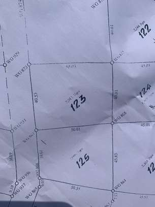 PLOTS FOR SALE AT DODOMA TOWN image 1