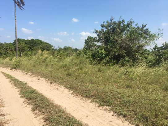 FARMLAND FOR SALE AT BUMA IN BAGAMOYO TOWN image 6